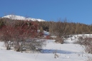 ND des Neiges Dec 2013