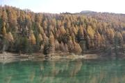 Lac D'Orceyrette, automne.