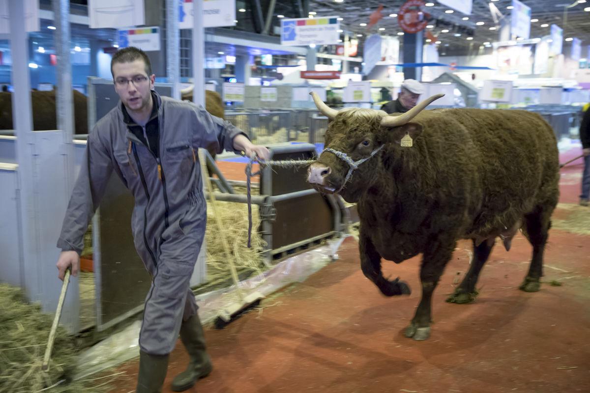 Agriculture fran aise du labeur des subventions et des - Salon de agriculture ...